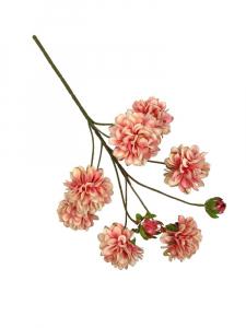 Chryzantema gałązka 47 cm różowa z kremem